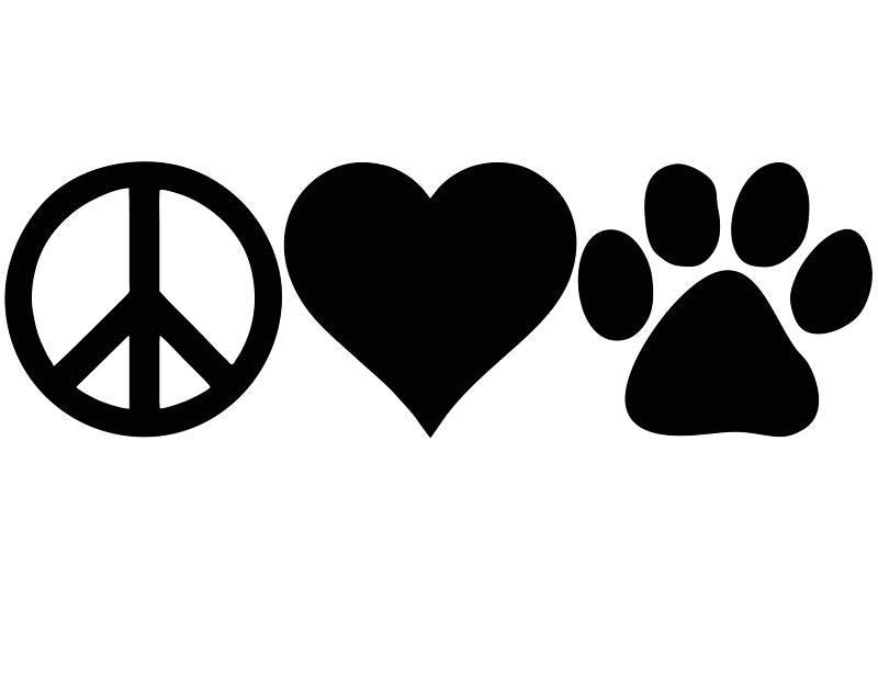 Adopt A Pet Homtv Meridian Township Michigan