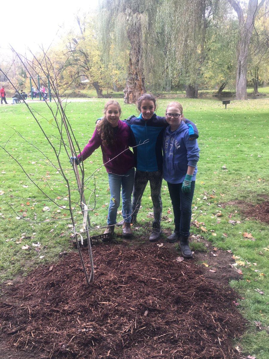 80 Students Plant Trees at Ferguson Park