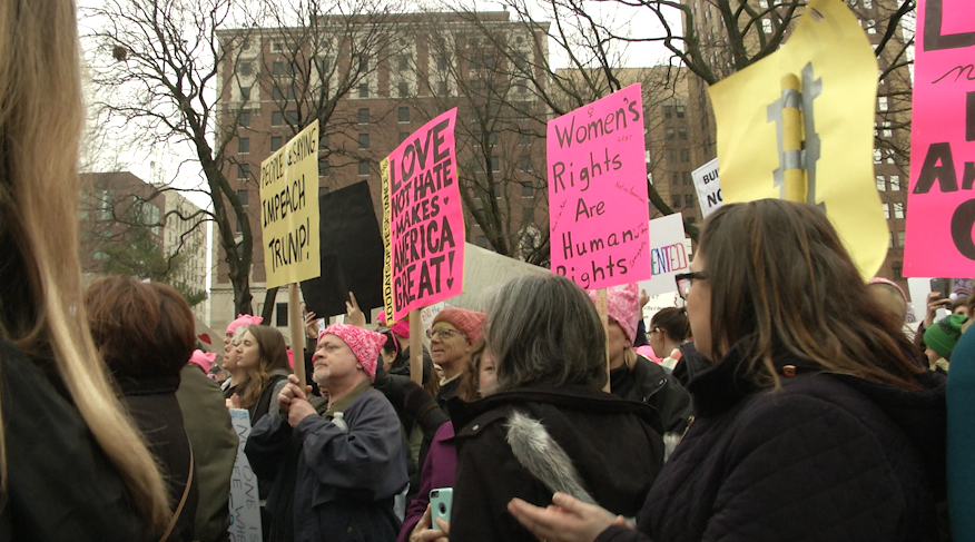 Lansing Women's March--A Chapter of One 